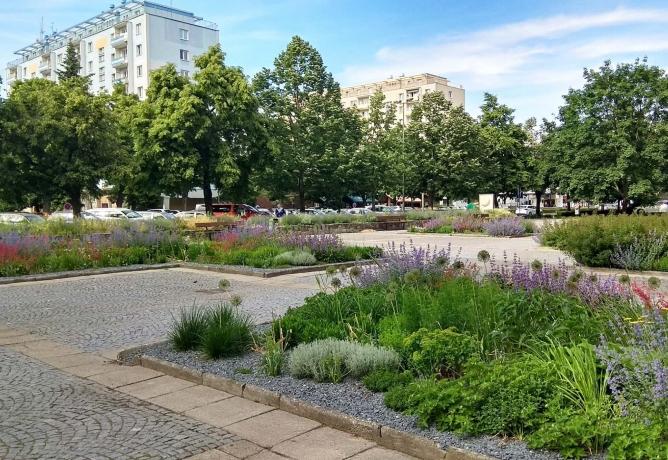 Svatopluk Binder: Vize 2020 vstupní brány do Olomouce, Nových Hodolan
